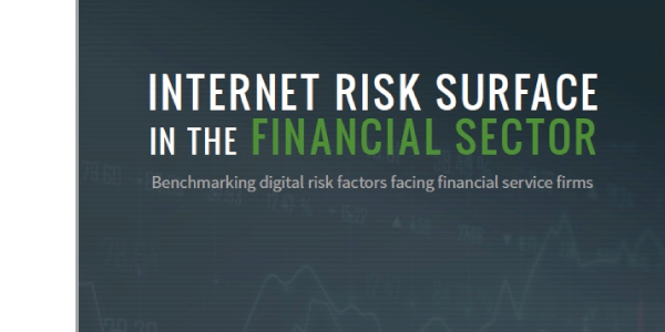 Internet Risk Surface in the Finance Sector Report