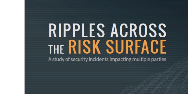 Ripples Across the Risk Surface Report